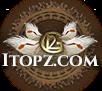 VOTE FOR US  iTopZ.com